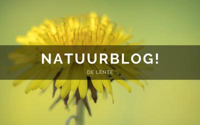Natuurblog: De lente