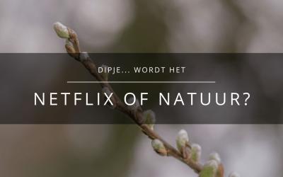 Dipje… Natuur of Netflix?