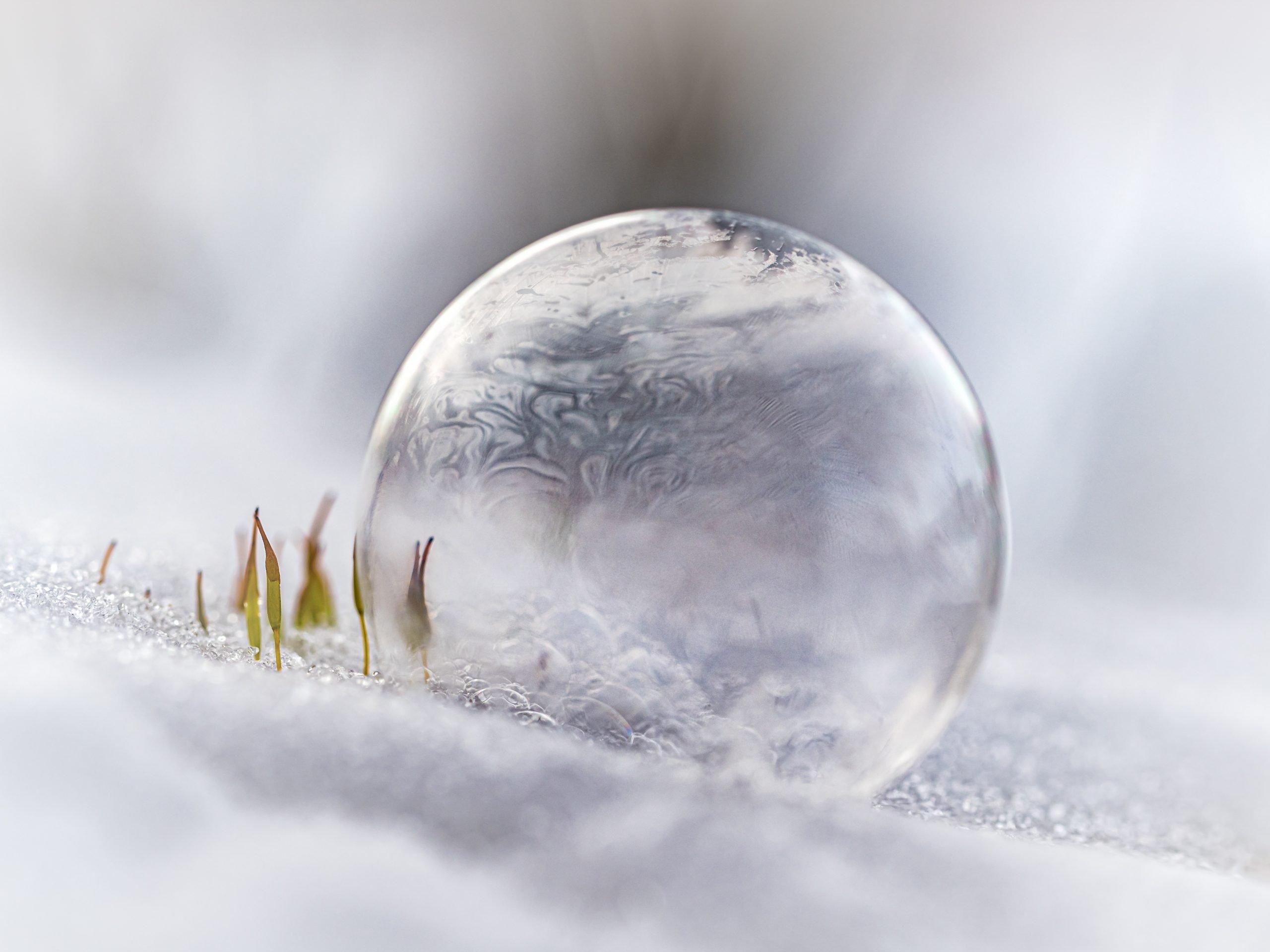 bevroren bubbels