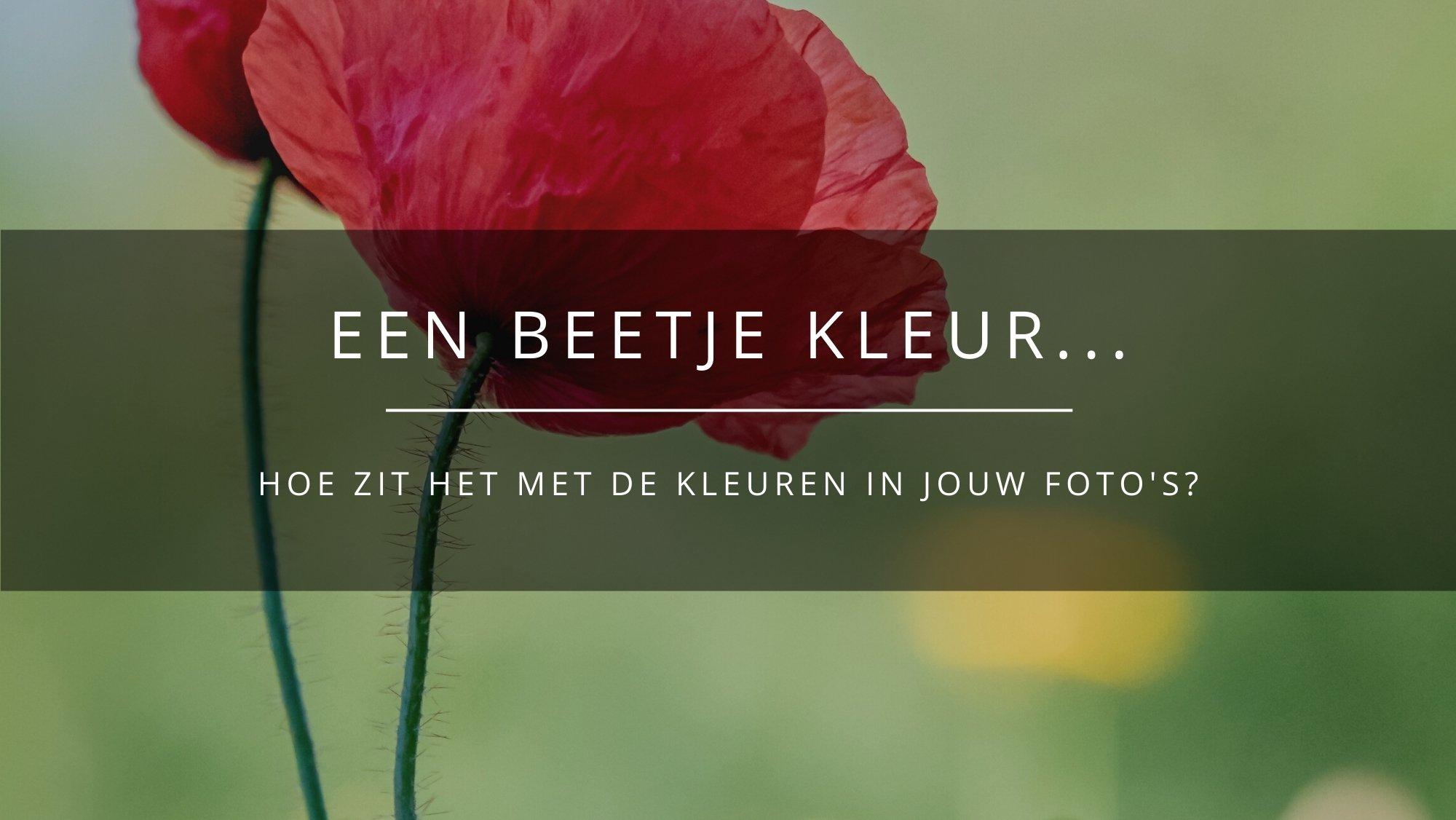 Een beetje kleur - blog - Arnhemsmeiske fotografie