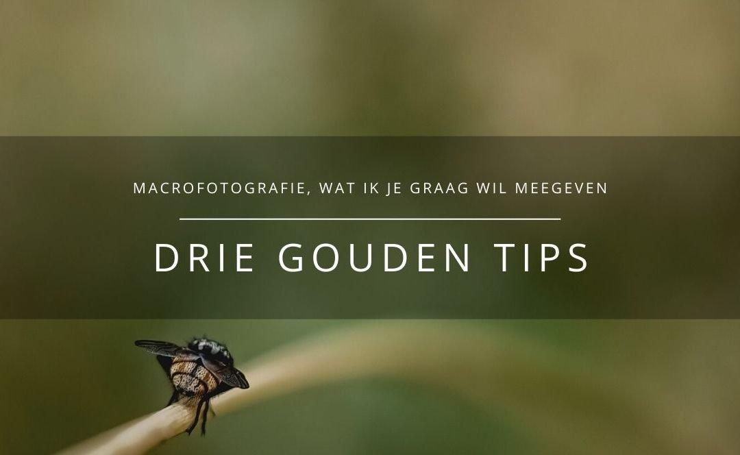 DRIE GOUDEN TIPS voor macrofotografie
